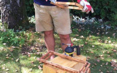 Rähmchen und Wachs – Vorbereitung auf das neue Bienenjahr