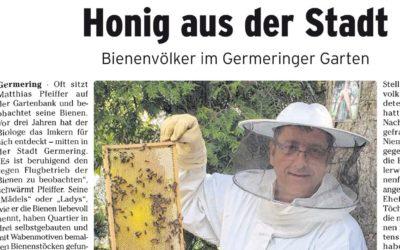 Honig aus der Stadt