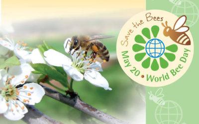 20. Mai ist Weltbienentag – Mai 2018